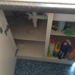 End of Tenancy cleaning-project in Hornchurch Essex RM12 by Sunny Clean 4