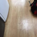 End of Tenancy cleaning project in Camden London by Sunny Clean 19