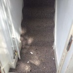 The clean result after the performance of End of Tenancy Cleaning Project in Leyton E11 4EX London by Sunny Clean 2