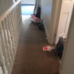 Check the result in all rooms in a London flat after End of Tenancy Cleaning Project by Sunny Clean 5