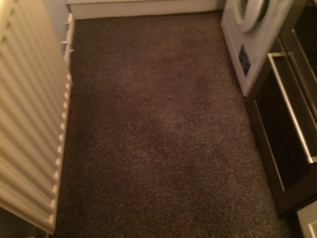 as-you-can-see-the-condition-of-this-carpet-in-a-flat-in-romford-is-immaculate-after-sunny-cleans-workers-finished-their-job